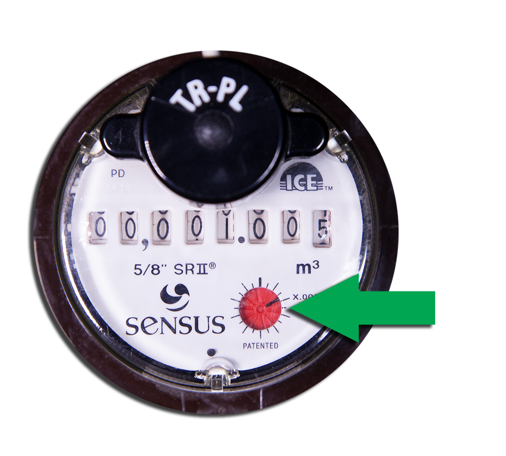 photo of sensus meter