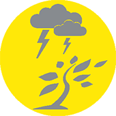 severe weather icon