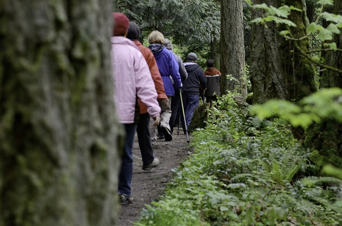 photo of hikers on wooded trail