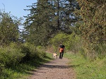 Man and his dog enjoying the trails in Cuthbert Holmes Park